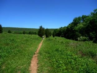 Walking toward the ridge