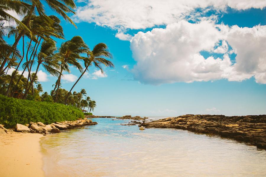 KyleSFord_Hawaii_Seattle_Vaca_0028