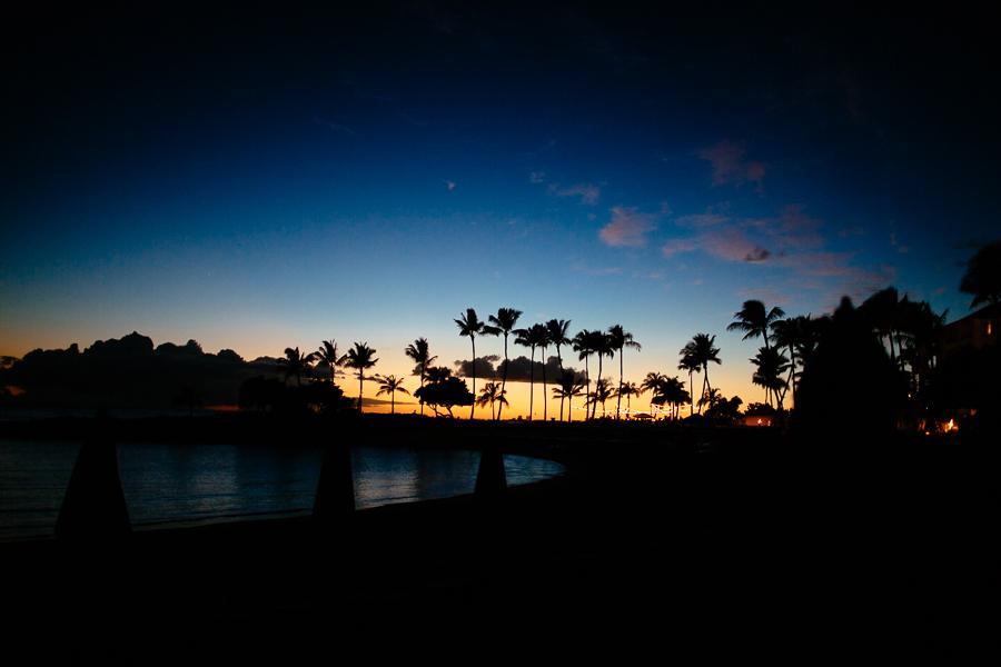 KyleSFord_Hawaii_Seattle_Vaca_0031