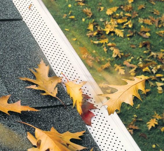 leaf screen leaf guard