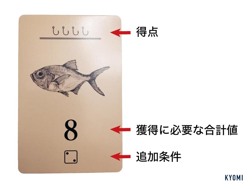 ダイ公望-写真-お魚カード