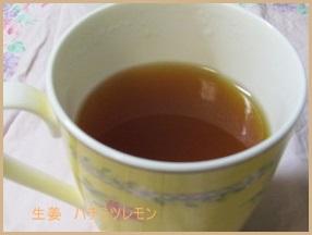 susyouga 生姜 レシピ 簡単にダイエットできたらいいですね