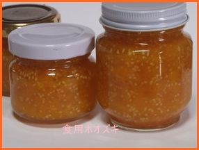 hoozuki507-1 世界一受けたい授業で放送された 食用ほおずき ゴールデンベリーの食べ方