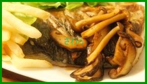 24-1-256x300 さわら(鰆)レシピ 人気の味噌焼き・塩焼き・ムニエル・煮付け