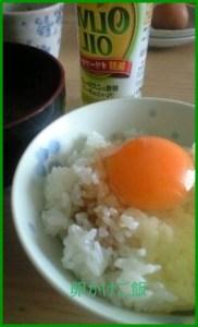 ta1 卵かけご飯レシピ 人気の簡単アレンジを紹介します。