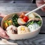 ヒルナンデスレシピ ママの悩み!食中毒や傷むのを防ぐお弁当作り