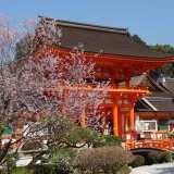賀茂川沿いを散歩して上賀茂神社お参りして焼き餅買う。