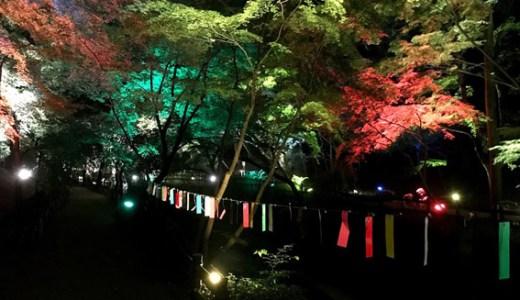 『京の七夕』北野天満宮と願い事