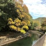 JR山科駅北に新築分譲マンション『シャリエ山科』登場!!