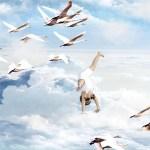 4/8 夢のまた夢でも情熱と遊び心で盛り上げる牡羊座の太陽