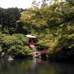 世界遺産kyoto醍醐寺 平日のおとなの時間