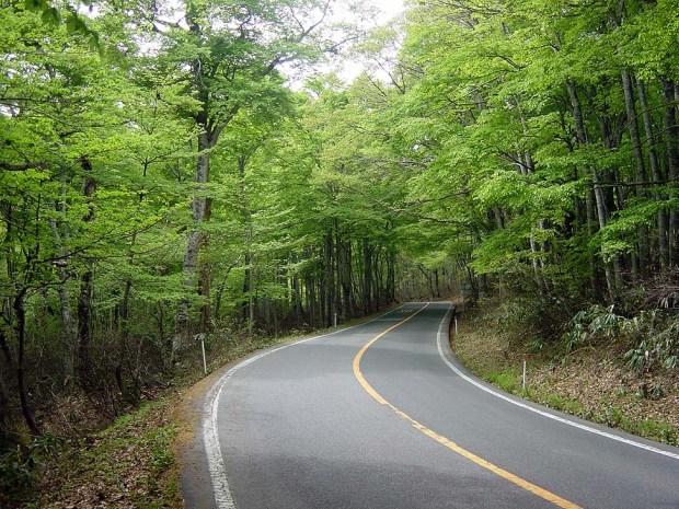 大山環状道路 Daisen winding road