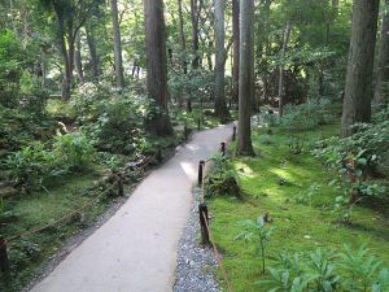 京都大原三千院庭園山道2