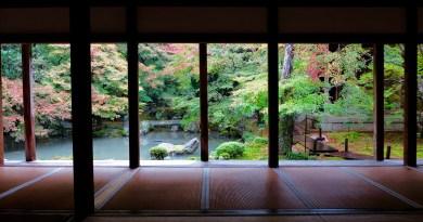 蓮華寺紅葉の庭