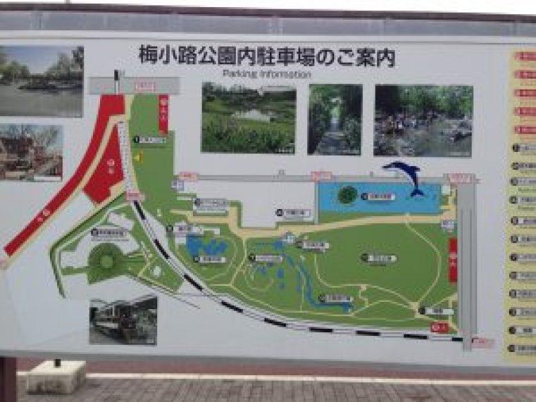 梅小路公園3