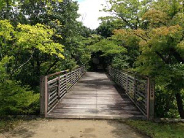梅小路公園555