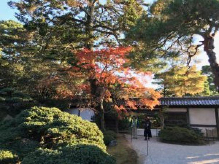 京都御所22