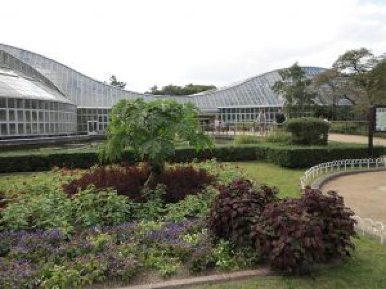京都府立植物園21