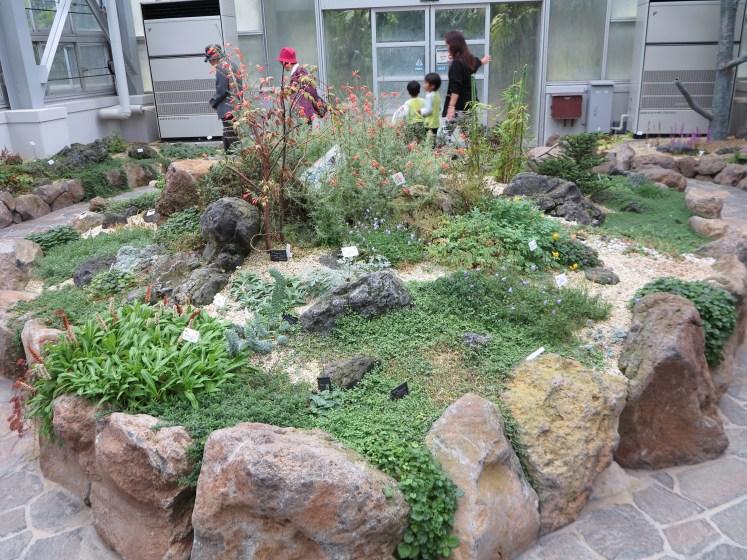 京都府立植物園14