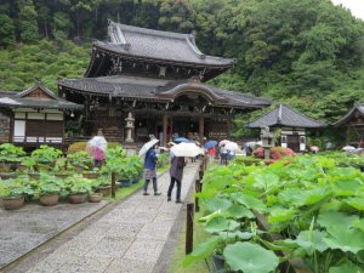 三室戸寺11