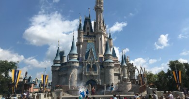 disneyworldmagickingdom6