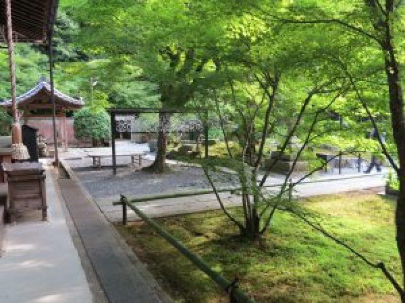 大文字山京都トレイル26