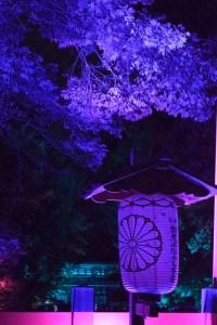糺の森ライトアップ