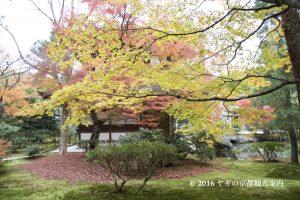 銀閣寺の紅葉2017