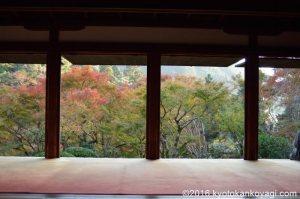 2018高山寺の紅葉