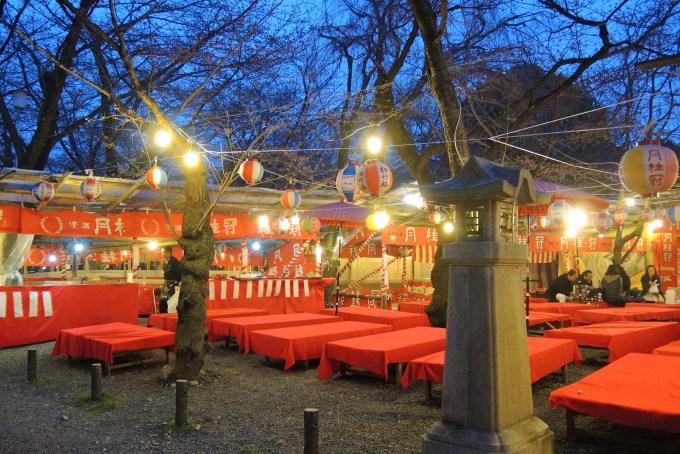 京都「平野神社」桜茶屋