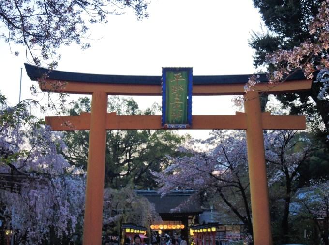 京都「平野神社」桜