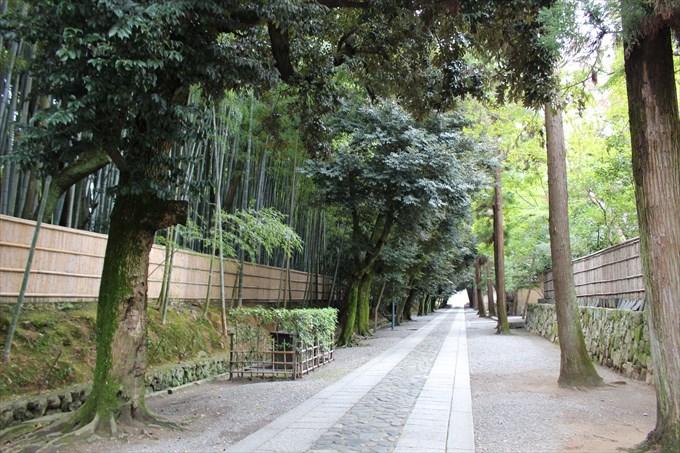40まっすぐ行くと左に竹やぶ