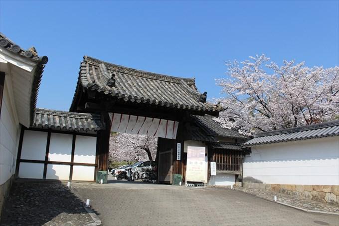 5勧修寺の山門