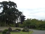 東寺見どころ