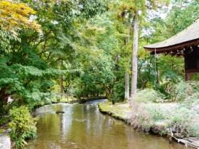 上賀茂神社ハギ