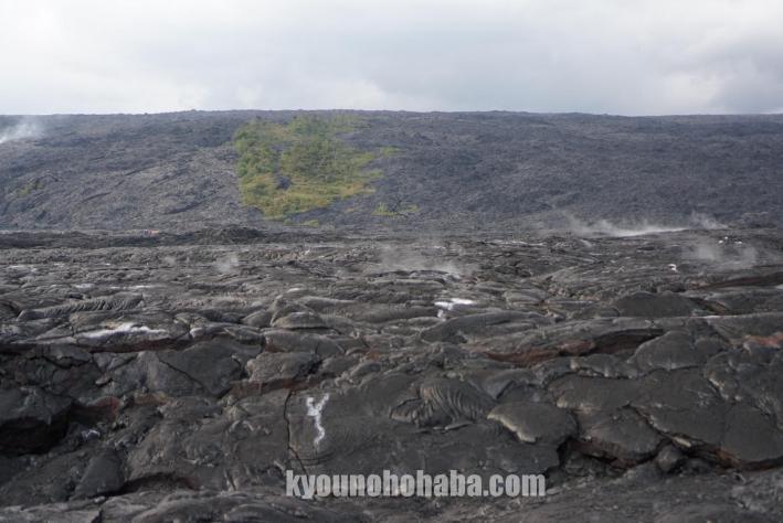 ハワイ島 キラウエア火山 溶岩 ツアー