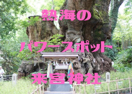 熱海 パワースポット 来宮神社