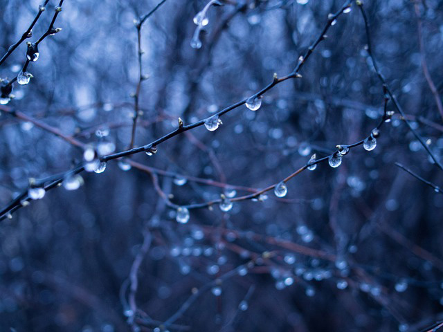 the-chill-rain-the-beautiful-forbidden-by-kyra-dawson