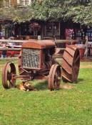 dog under tractor