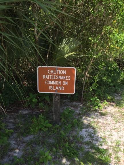 caution rattlesnakes