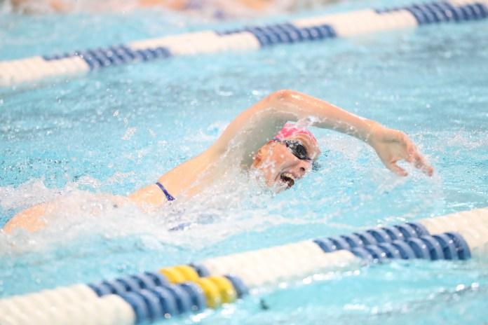University of Kentucky swim & dive