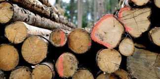 ξύλα επίδομα θέρμανσης