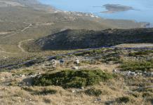agios-giorgis-epanenarksi