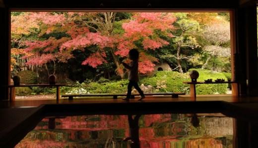 欣賞倒影的紅葉 – 壽福寺