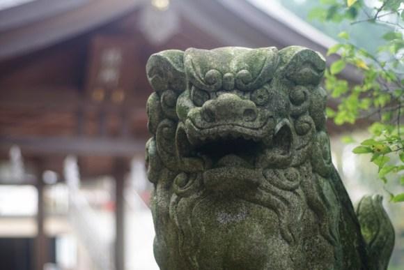 高麗神社 狛犬