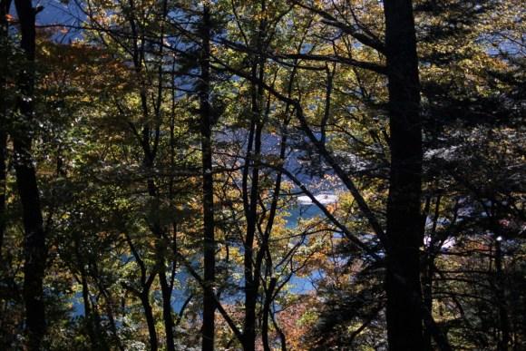 小河内神社から見る奥多摩湖