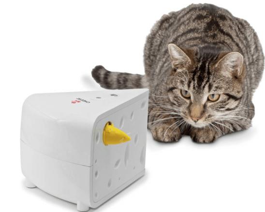 Christmas pet gift: cat teaser