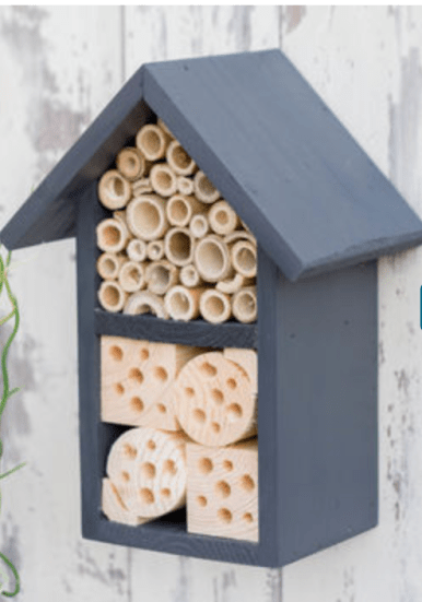 4 awesome fathers day gift ideas - bee hotel