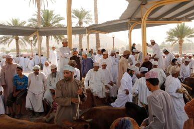 Oman 2012 427.JPG