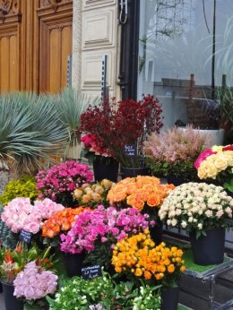 Humeurs de Paris Fleurs couleurs Josée Noiseux.jpeg